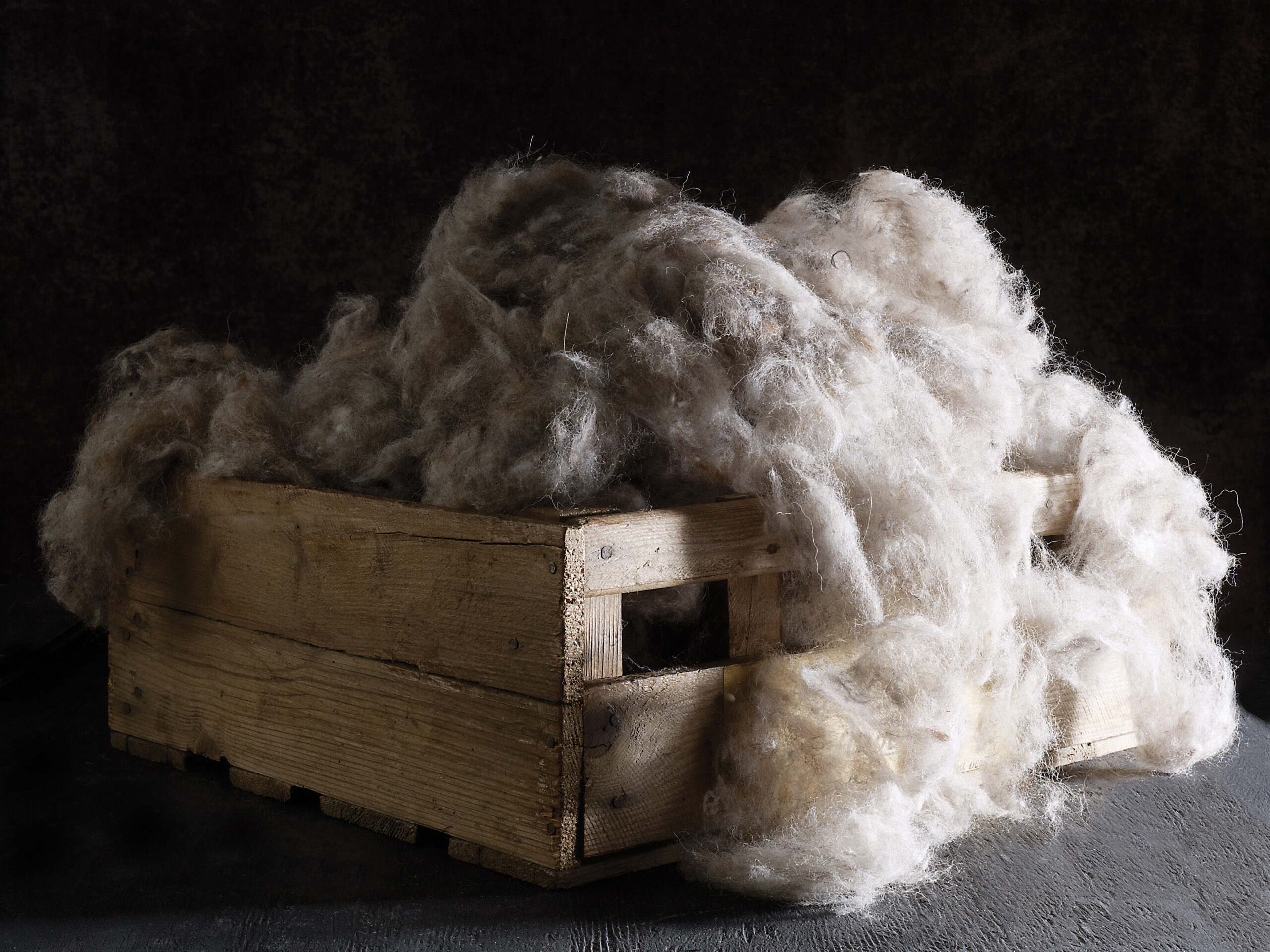 Hypnos Craftsman Alpaca 001 scaled i Vigna